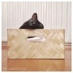 Simple DIY cat bed from IKEA – The Moomincats Blog